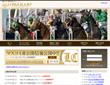 競馬情報サイト画像